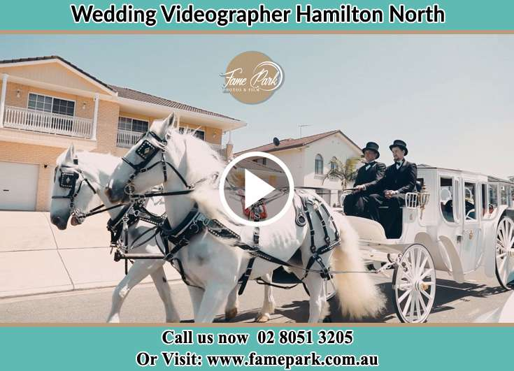 The wedding carriage Hamilton North NSW 2292