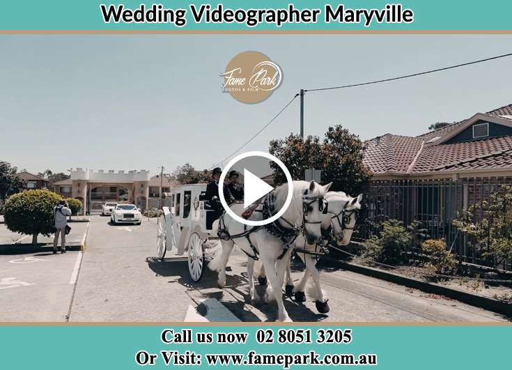 The wedding carriage Maryville NSW 2293